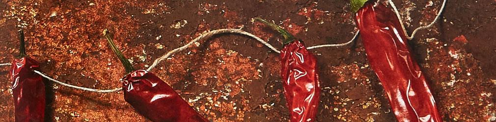 aromen-und-gewuerze-rezepte-kochbuch-kosmosverlag-foodfoto-foodundtext0198