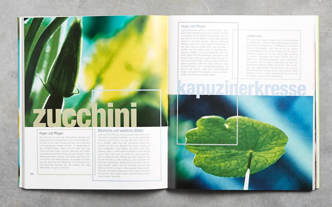das-balkonkochbuch-gerten-rezepte-kraueter-pflanzen-haedecke-verlag-foodfoto-foodundtext0226