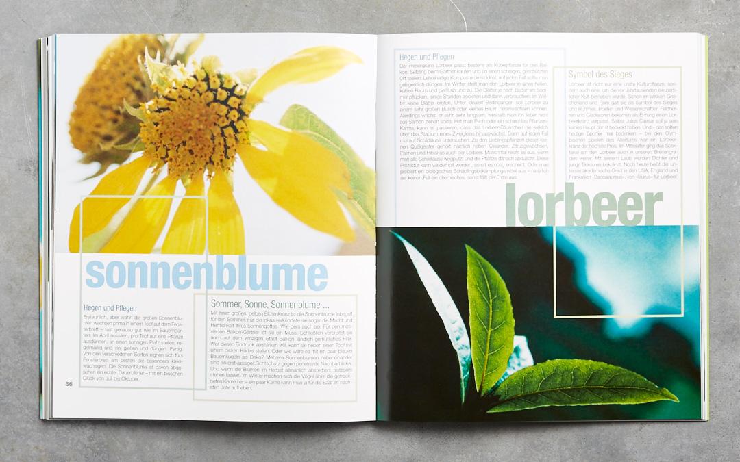 das-balkonkochbuch-gerten-rezepte-kraueter-pflanzen-haedecke-verlag-foodfoto-foodundtext0228