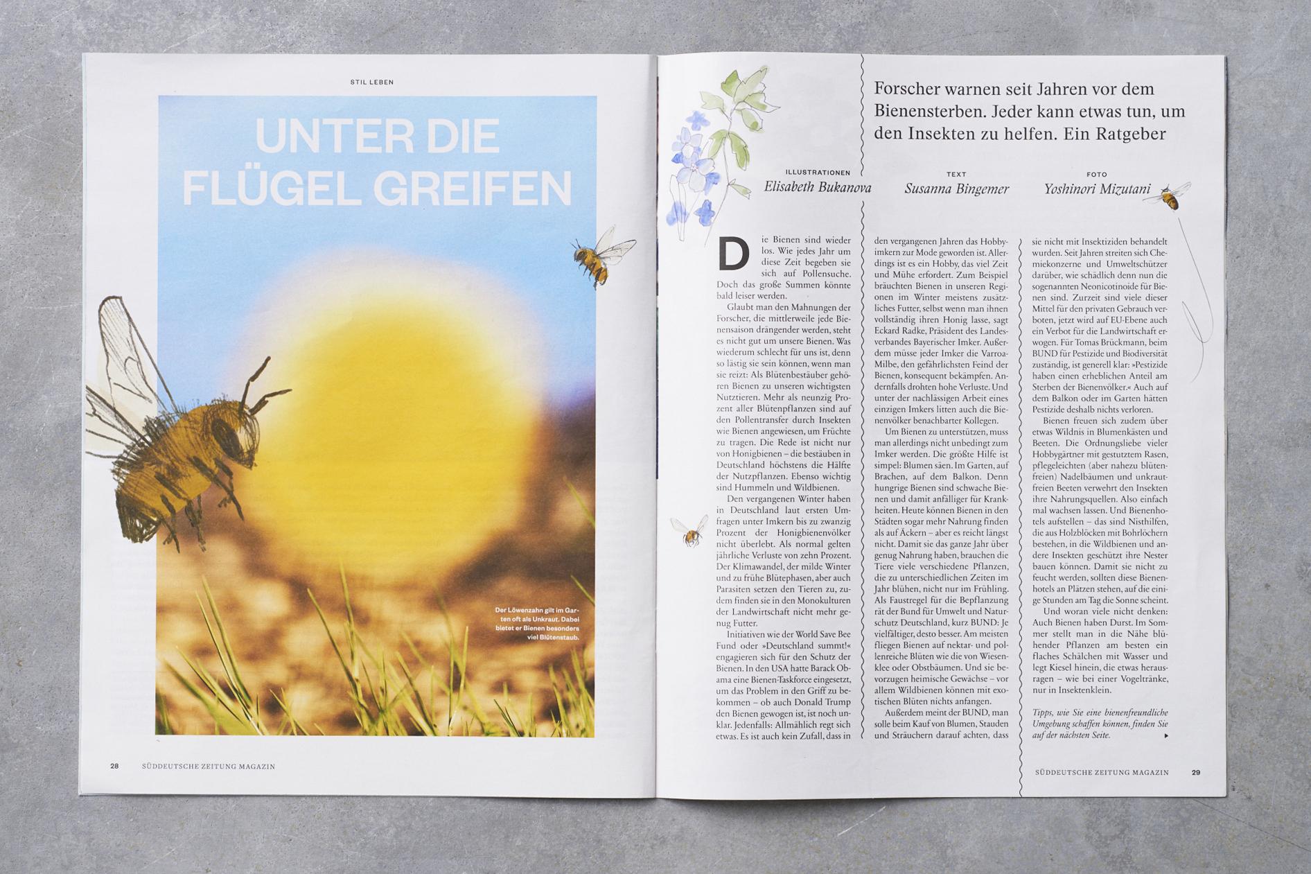 SZ_Magazin_Susanna_Bienen Kopie